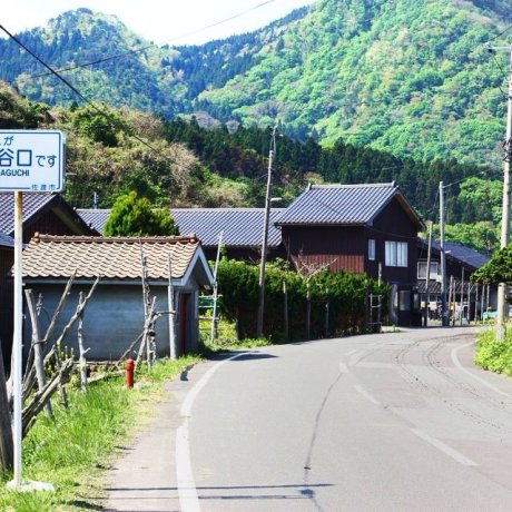 Couchsurfing di Jepang