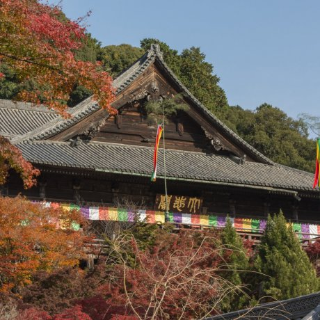 Hasedera Temple and Abe Monjuin Temple